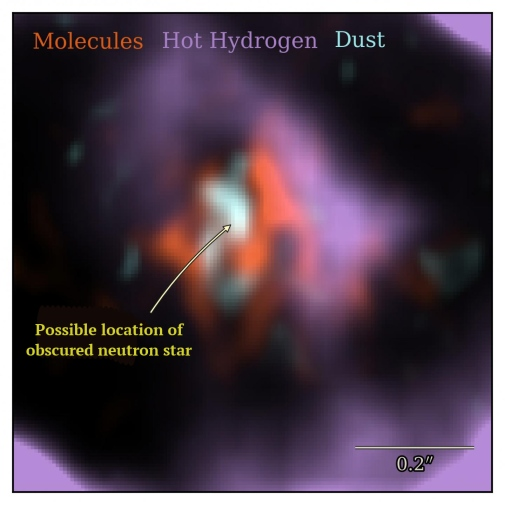 An image showing that molecules, hot hydrogen gas, and hot dust are not co-located near SN1987A.